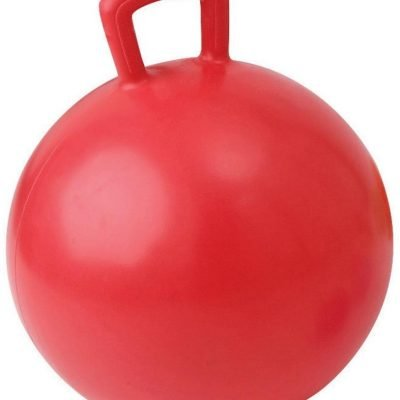 Gimnastikos kamuolys su rankena JUMPING BALL 55cm red