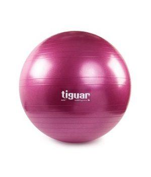 Gimnastikos kamuolys TIGUAR Safety Plus, 65cm